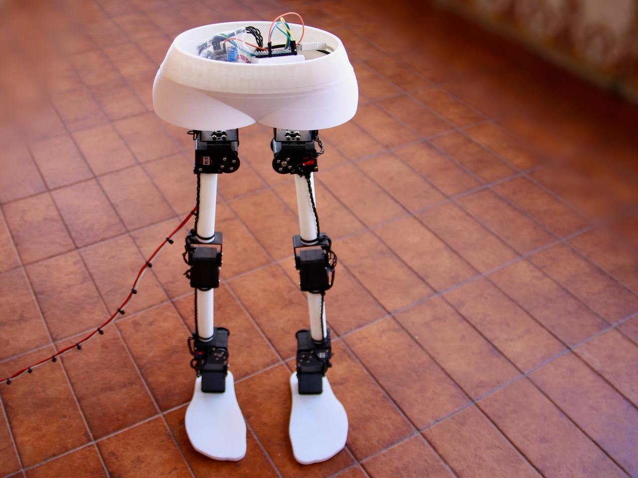 Walbi biped robot